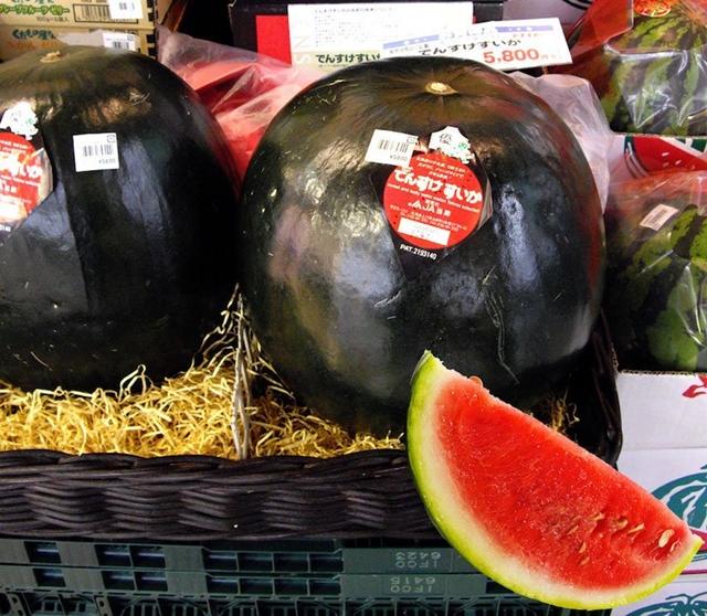 Ovo definitivno nije lubenica koju ćete naći u našim marketima ( foto: Lolwot)