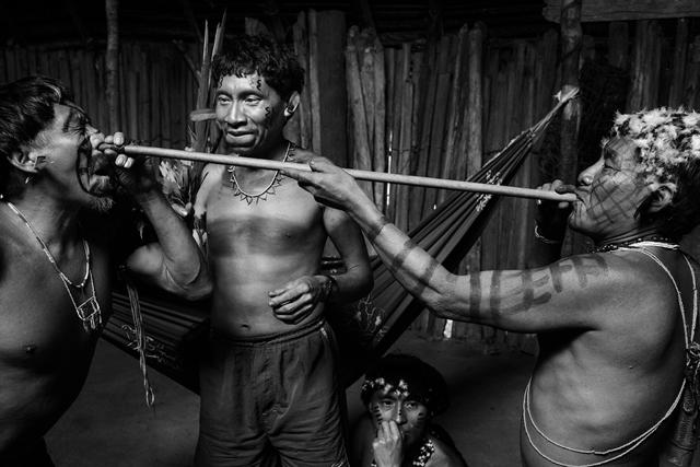Na Novoj Gvineji momci piju spermu najboljeg ratnika plemena (Foto: Wittyfeed.com)