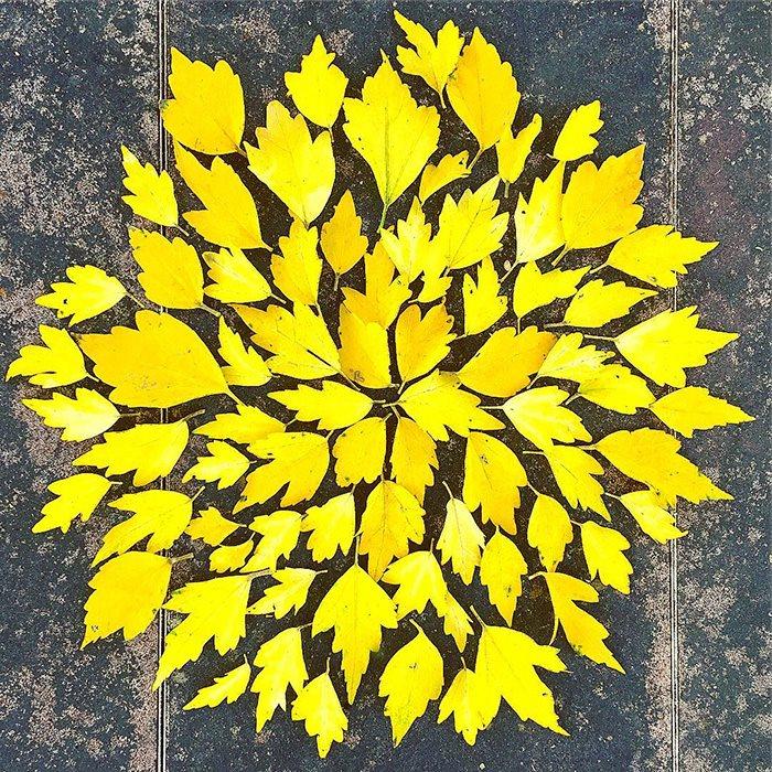 japan-lišće-umetnost-6